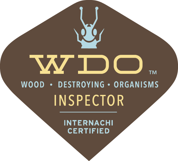 WDI wood destroying insect inspection - termite inspection in Utah County