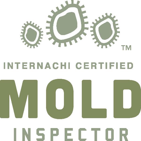 Provo mold inspection near me