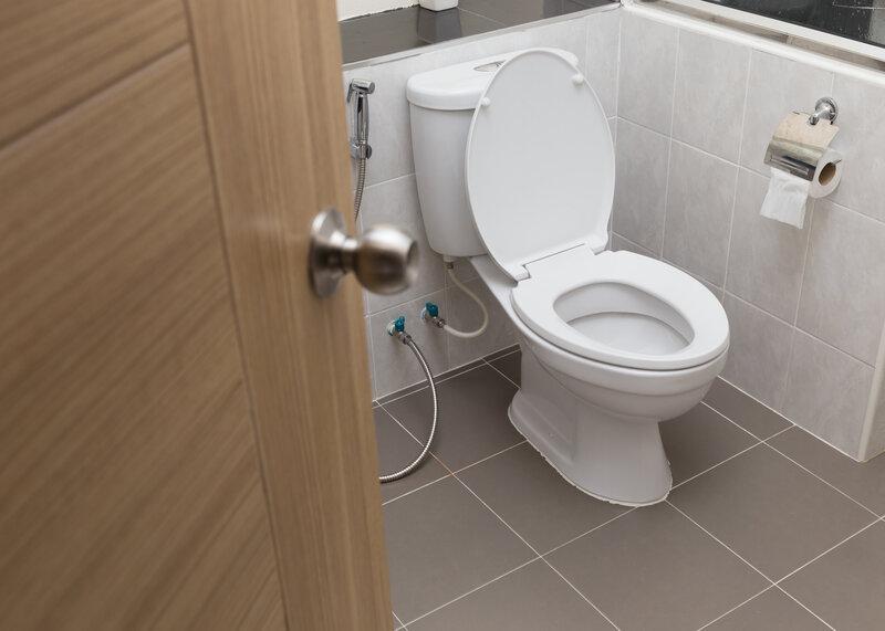Toilet Inspection Provo